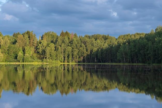 Weerspiegeling van bomen in een bosmeer bij zomermoring