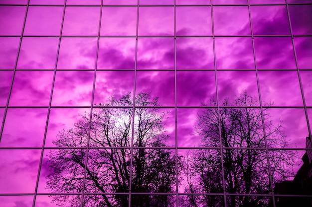 Weerspiegeling van bomen in het glazen raam. moderne weergave.