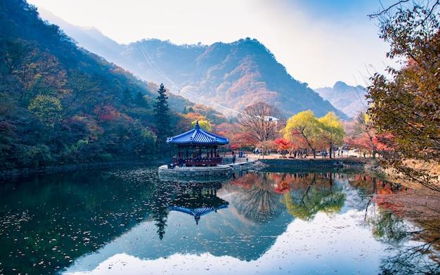 Weerspiegeling van de herfstseizoen bij het nationale park van naejangsan, zuid-korea.