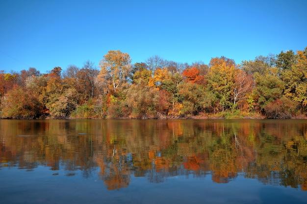 Weerspiegeling van een prachtig herfstbos in de rivier, tegen de achtergrond van een heldere blauwe hemel zonder wolken