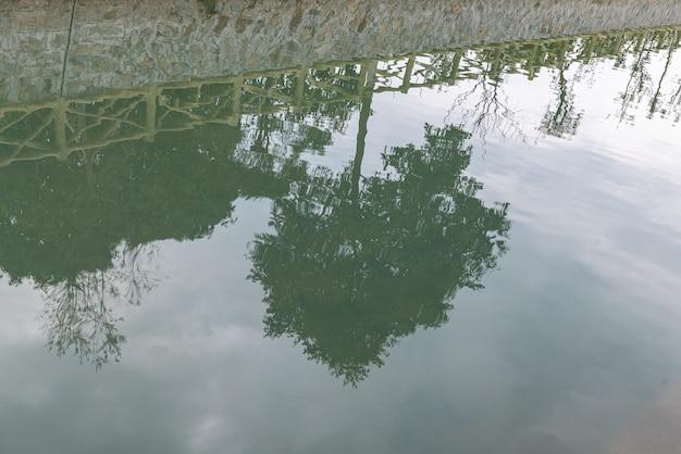 Weerspiegeling van helder water en onderwaterwezens