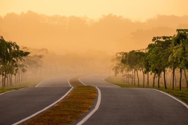 Weg bochten in de warme ochtend met zonlicht in de natuur.