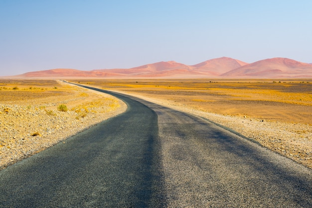 Weg die de namib-woestijn kruist