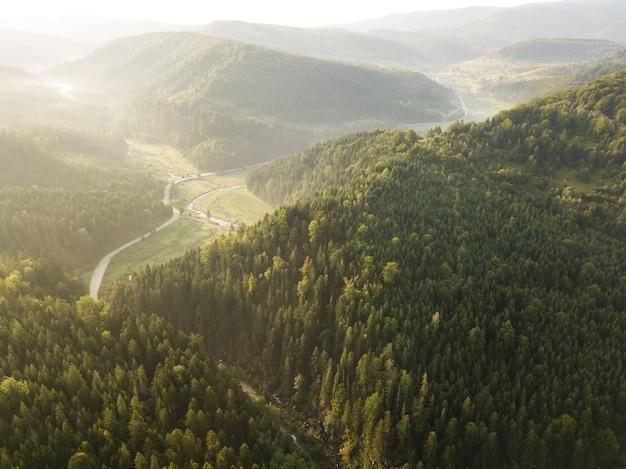 Weg door bergen en bos gevangen van bovenaf