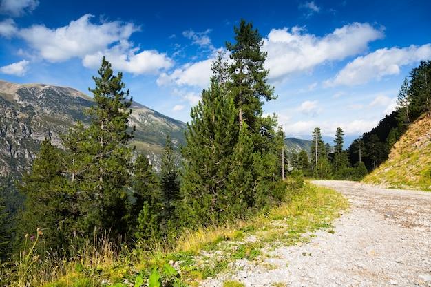 Weg door bosbergen