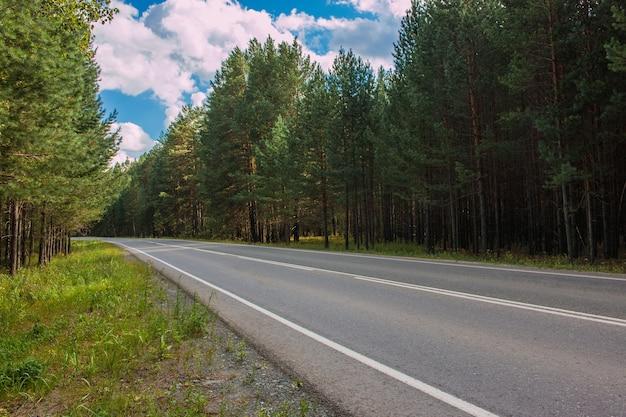 Weg door groen diep bos in rusland. rond groene dennen en blauwe lucht, zonnige dag en herfsttijden