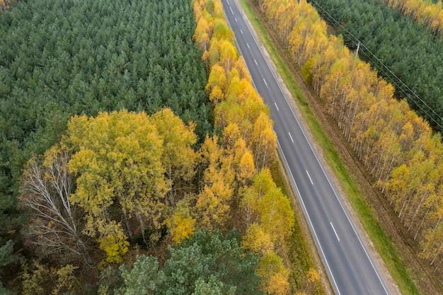 Weg door het bovenaanzicht van het herfstbos van een drone