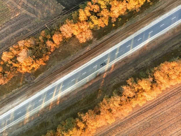 Weg in de herfst