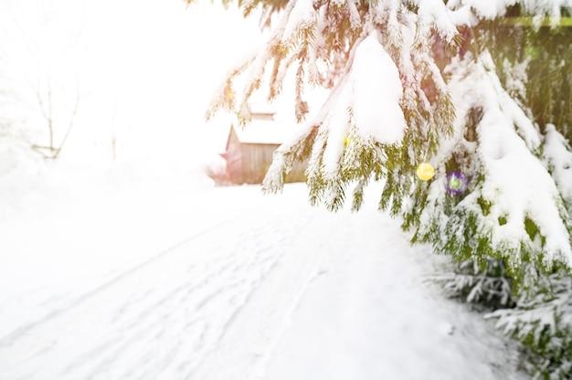 Weg in de sneeuw koude winter, zonnig