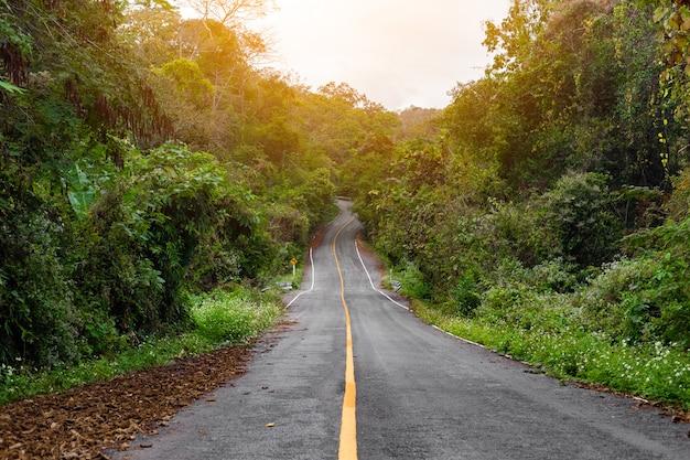 Weg in de wildernistropen in thailand.