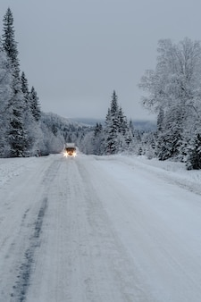 Weg in een bos dat in de sneeuw met een vrachtwagen en bomen wordt behandeld