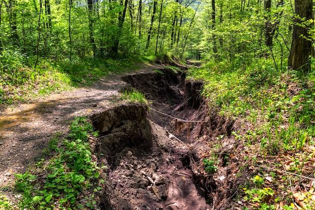 Weg in het bos vernietigd door een overstroming