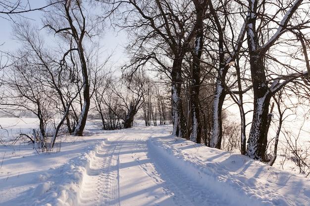 Weg in het winterseizoen