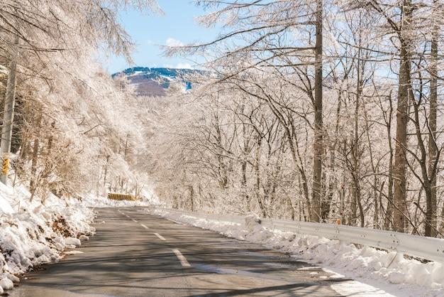 Weg naar de bergen in de winter (japan)