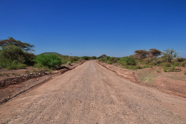 Weg naar dorp van bosjesmannen, afrika