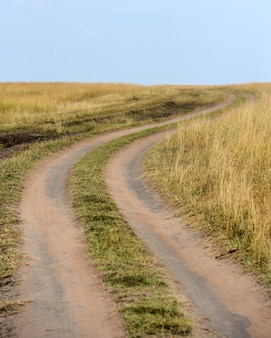 Weg naar het nationale reservaat van kenia, afrika