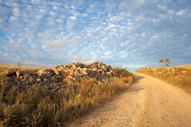 Weg op het platteland