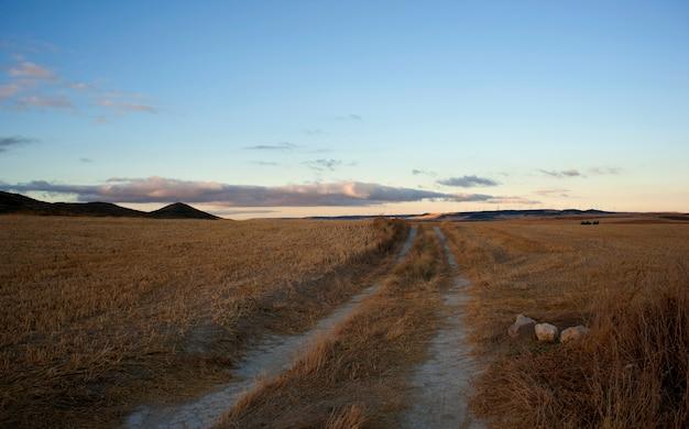 Weg op het spaanse platteland