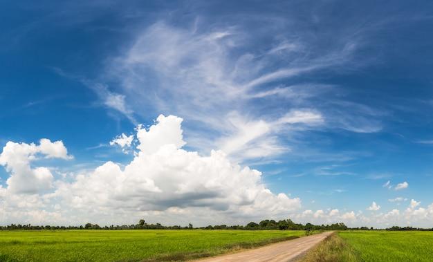 Weide met landweg op blauwe hemel