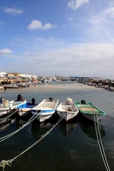 Weids uitzicht op de typische vissersdokken van portugal.