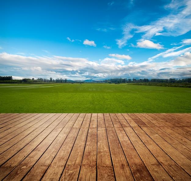 Weiland duidelijke landbouw zon grasland