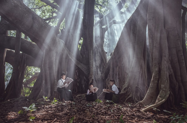 Weinig aziatische jongen die een boek leest onder grote boom op plattelandsgebieden