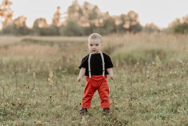 Weinig babyjongen die op de zomergras lopen op gebied
