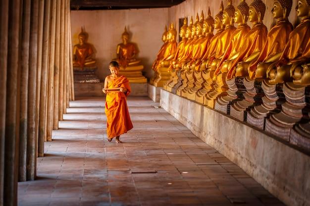 Weinig beginneling lezing en het bestuderen van bord met grappig in oude tempel, ayutthaya-provincie, thailand