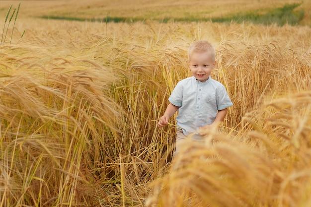 Weinig gelukkig kind op tarweveld. zomer natuur, buiten wandelen. jeugd geluk