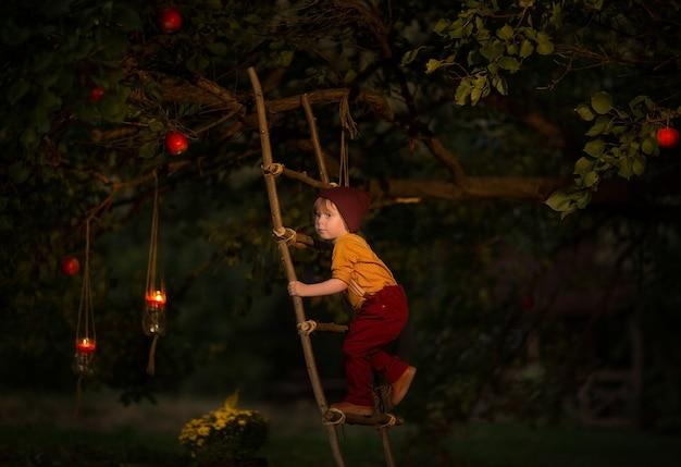 Weinig jongen die een magische appelboom beklimt door houten ladder bij nacht. sprookje. kopieer ruimte.