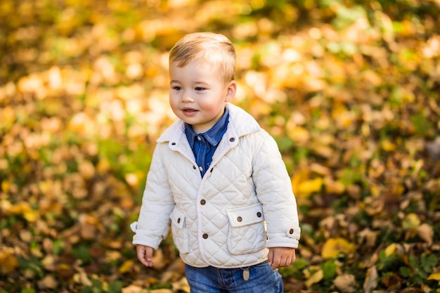Weinig jongen die in geel gebladerte speelt. herfst in het stadspark jonge jongen.