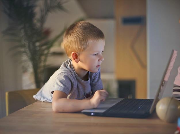 Weinig jongen die laptop bekijkt