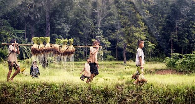 Weinig jongen en meisjeslandbouwer op groene gebieden
