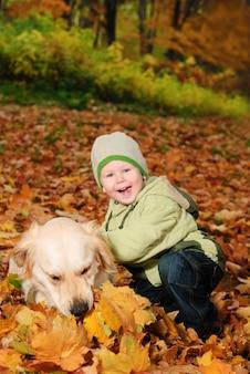 Weinig jongenszitting in esdoornherfstbladeren en glimlach. buiten portret