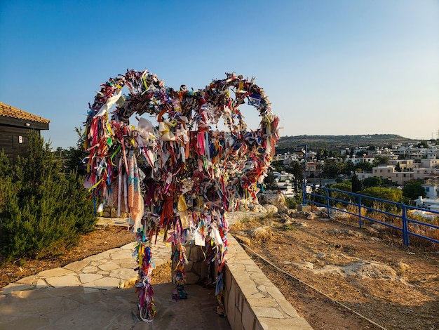 Wensboom saint elijah chirch protaras cyprus