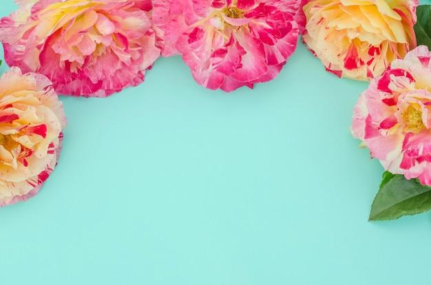 Wenskaart, delicate rozen op groen en blauw