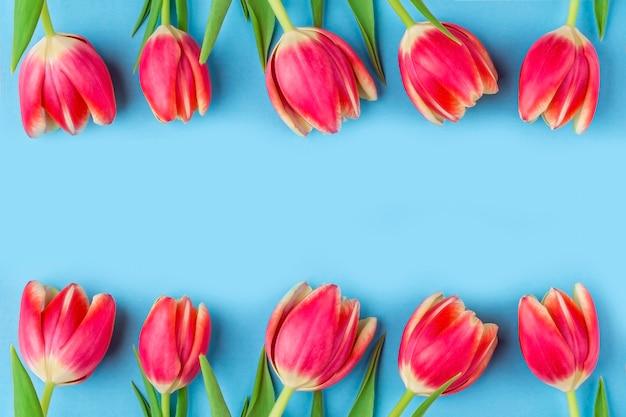 Wenskaart met frame van verse tulpen op blauw