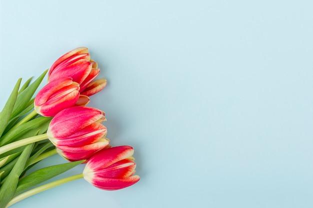 Wenskaart met frame van verse tulpen op blauwe achtergrond.