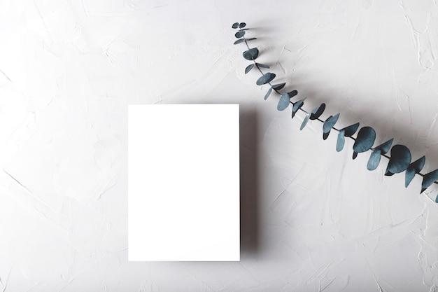 Wenskaartmodel op grijs met eucalyptus