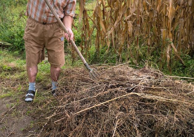 Werk in de tuin. boer die gedroogde takken harkt. herfst tijd