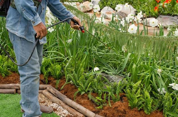 Werkman die insecticide in de tuin bespuiten