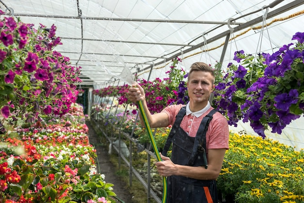 Werknemer die bloemen water geeft die in een kas zijn geteeld te koop