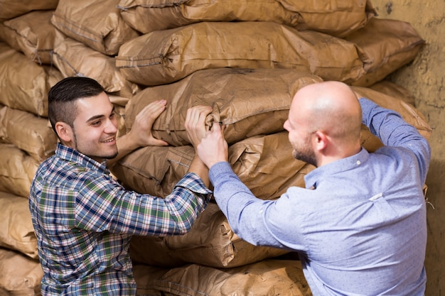 Werknemers die zakken cement dragen