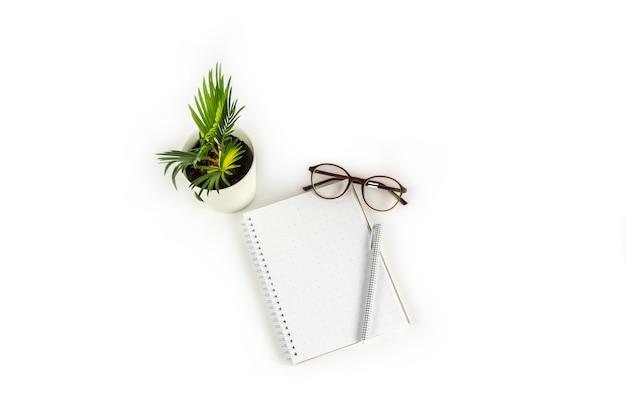 Werkruimtetafel met notitieboekje, pen, glazen, geïsoleerde houseplant