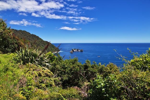 Westkust op het zuid-eiland, nieuw-zeeland