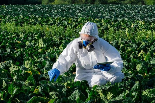 Wetenschapper die een witte beschermende uitrusting, een chemisch masker en een bril draagt, gebruikt tablet op boerderijgebied.
