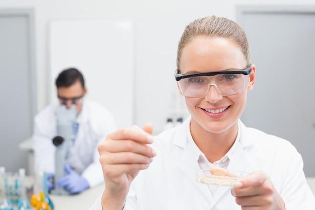 Wetenschapper die petrischaal onderzoekt