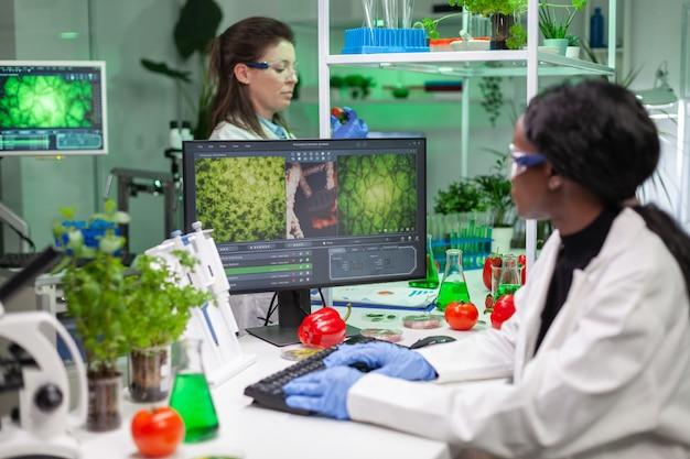 Wetenschapper vrouw typt microbiologische expertise op de computer voor wetenschappelijk landbouwexperiment. medisch team dat met groenten en fruit werkt en genetische mutatie ontdekt in een landbouwlaboratorium.