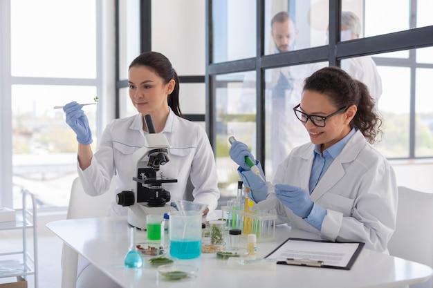 Wetenschappers die in laboratorium werken