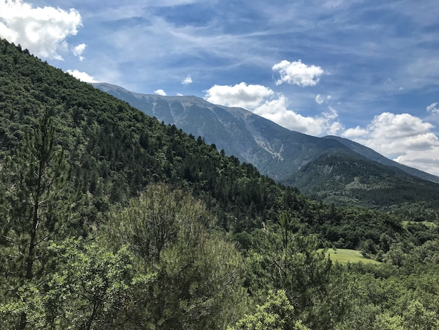 Wide shot van bergen bedekt met groene bomen onder een blauwe hemel met wolken